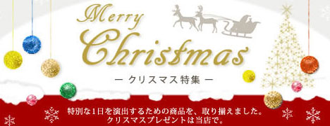 クリスマスプレゼント 送料無料コーナー